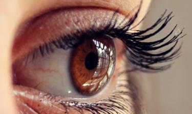 Myślimy oczami