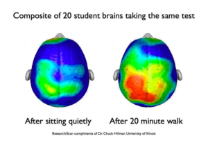 mozg_cwiczenia